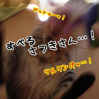 DZI93Tg_V_x7KjJ1408080159_1408080567.jpg