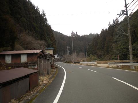 _kamihiyo13.jpg
