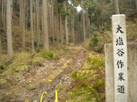 _kamihiyo18.jpg