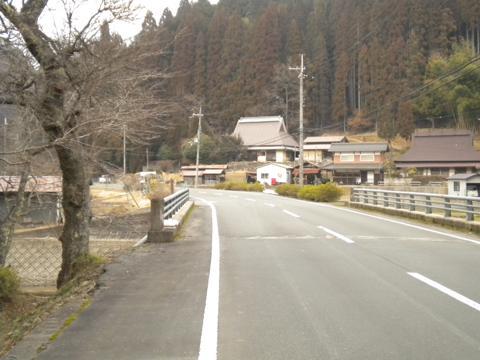 _kamihiyo20.jpg