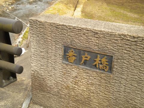 _kamihiyo24.jpg