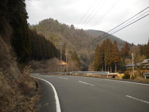 _kamihiyo31.jpg