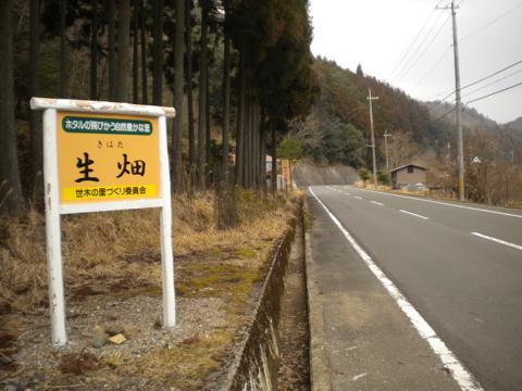 _kamihiyo33.jpg