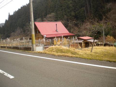 _kamihiyo38.jpg