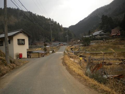 _kamihiyo47.jpg