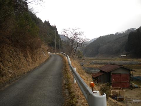 _kamihiyo69.jpg