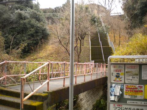 _kimokawa017.jpg