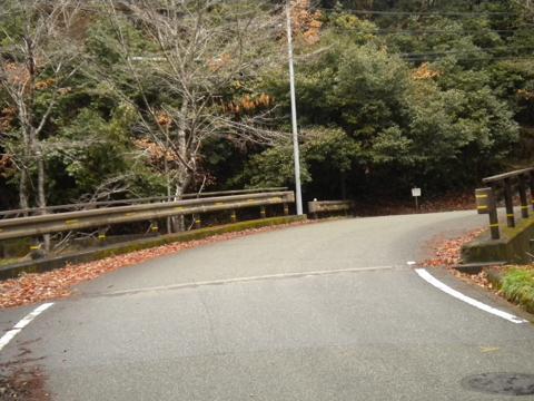 _kimokawa020.jpg
