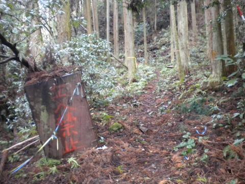 _kimokawa081.jpg
