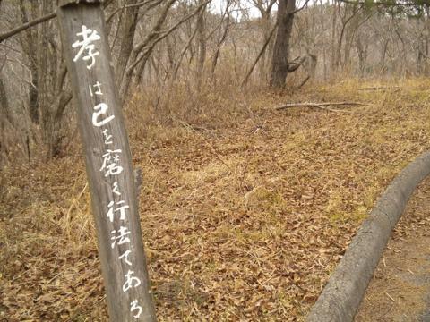 _kyokmo37_201404142050480a2.jpg