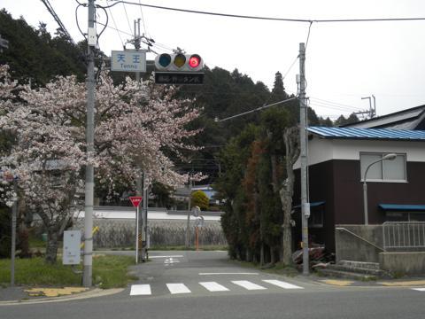 _miyama201.jpg