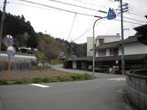 _miyama202.jpg