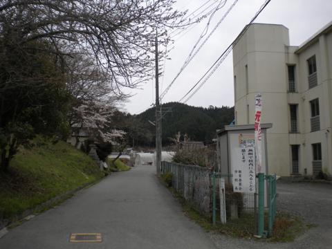 _miyama203.jpg