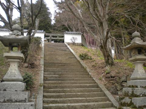 _miyama204.jpg