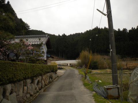 _miyama207.jpg