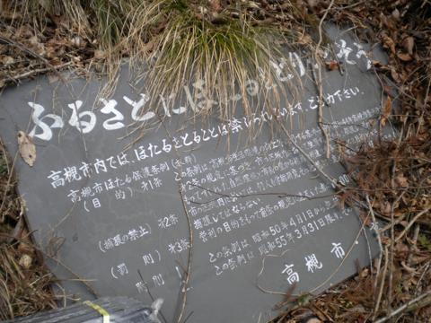 _niryo138.jpg