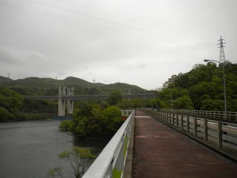 _shibure01.jpg