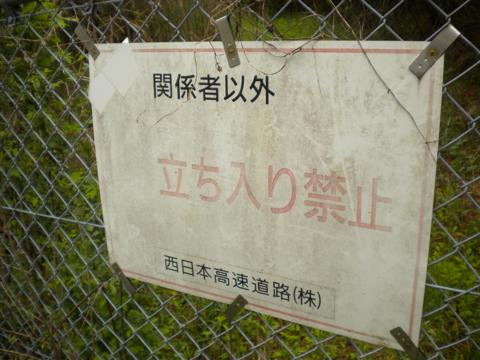 _shibureo13.jpg
