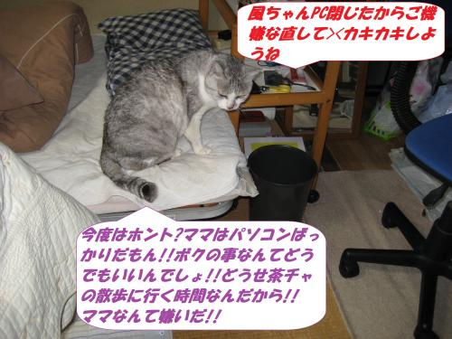 IMG_1644_convert_20140303080341.jpg