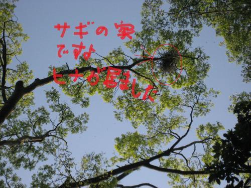 IMG_1733_convert_20140512094808.jpg