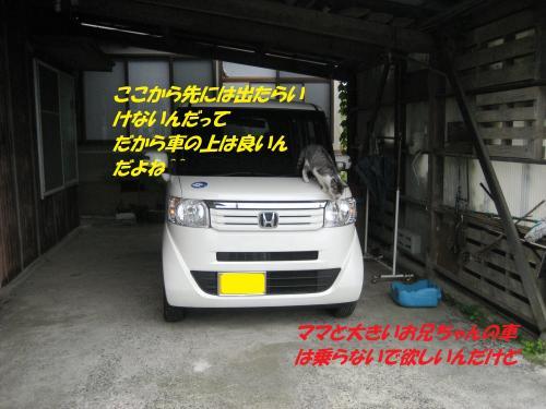 IMG_1802_convert_20140823090639.jpg