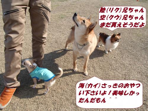 P3220003_convert_20140323081214.jpg