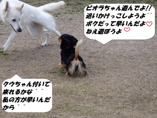 P3220007_convert_20140323081944.jpg