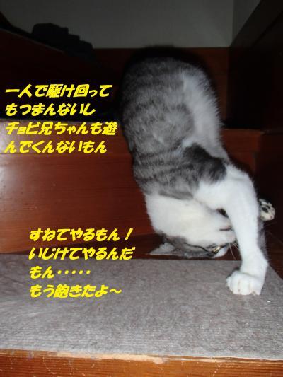 P8151546+(2)_convert_20140816101925.jpg