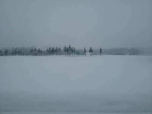 雪原20140221