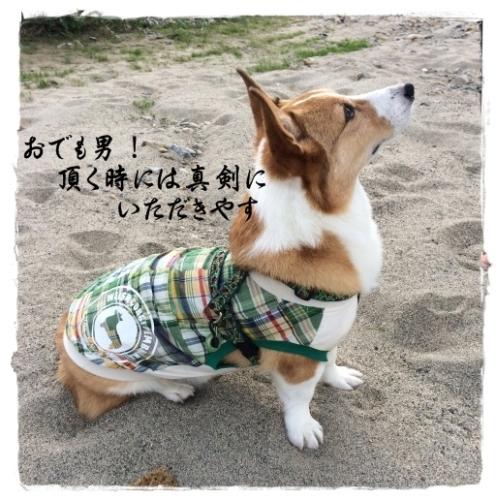 kashikoji.jpg