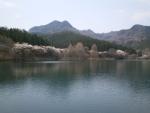 赤川ダム(大)