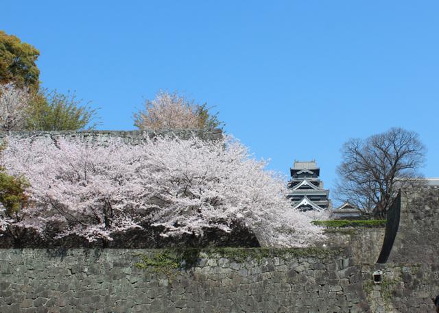 2014-3-29熊本城1