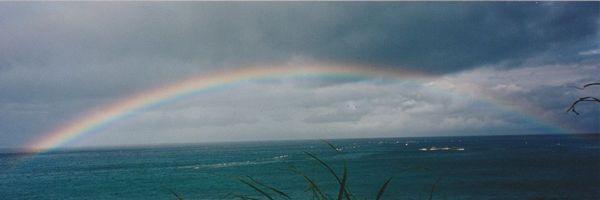 水平線にかかる虹