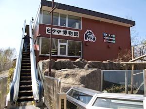 ヒグマ博物館