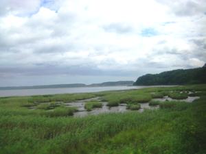 厚岸湖と湿原