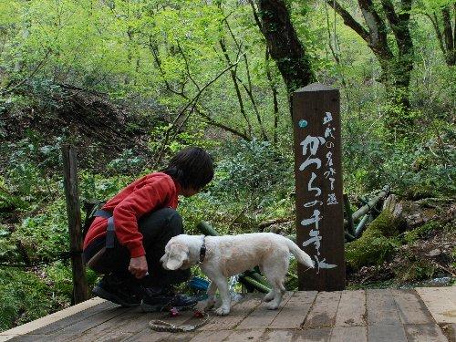 2014・05・04但馬植物園2
