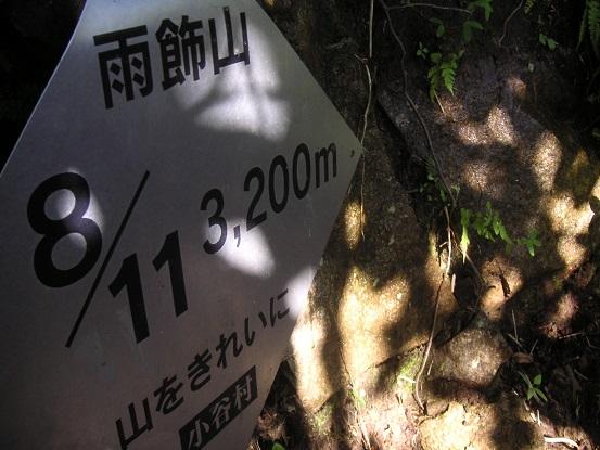 日陰が嬉しい8/11