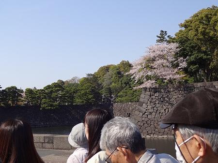 2014.4.07.tokyo 025