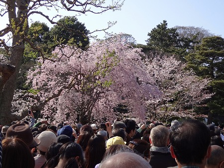 2014.4.07.tokyo 046