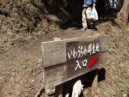 2014.4.8.iwauchiwa 012