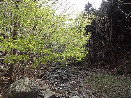 2014.4.16.narukami 002