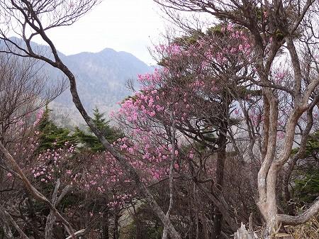 2014.5.20.maekesa 062