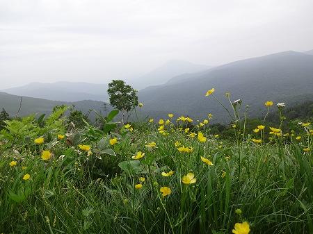 2014.7.13.kasagatake 030