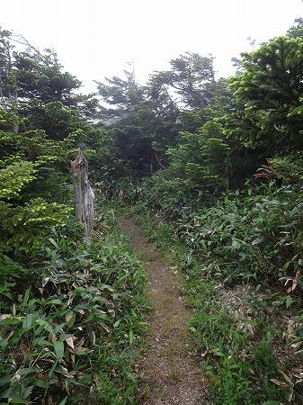 2014.7.13.kasagatake 203