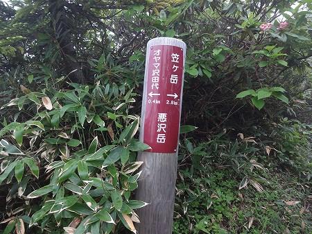 2014.7.13.kasagatake 217