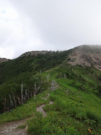 2014.8.7.shirane 079