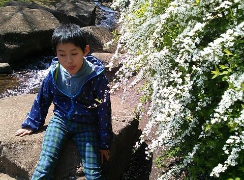 gardening66.jpg