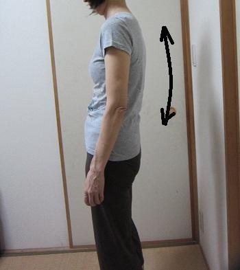 yoga19_20140514131325c1f.jpg