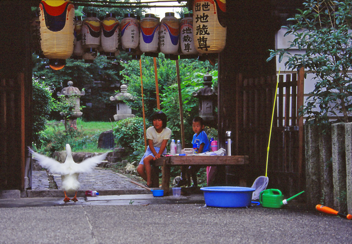 505奈良町