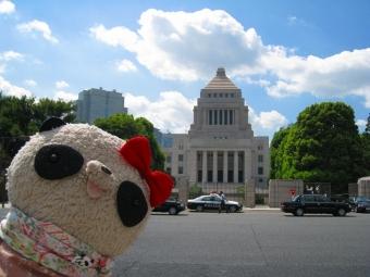 ばぶちゃん国会議事堂前